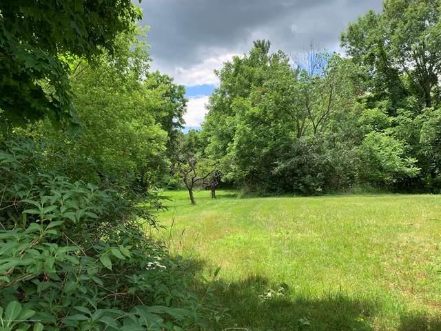 Lot 9 Wolf, East Lansing, MI 48823 (#630000247191) :: The Mulvihill Group