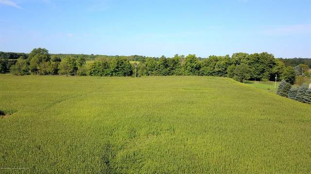 V/L Lot B Edgar Rd, Aurelius Twp, MI 48854 (#630000247274) :: The Alex Nugent Team | Real Estate One