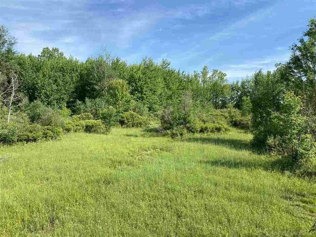 0 Todd And Hayes, Fremont Twp, MI 48097 (#58050015927) :: RE/MAX Nexus