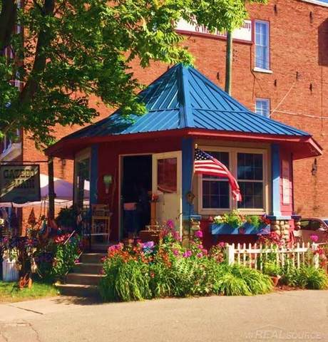 5481 Main St., Lexington Twp, MI 48450 (#58050016073) :: The Alex Nugent Team   Real Estate One