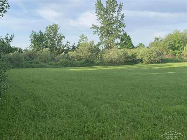 Lot 004 Webster Rd, Tittabawassee Twp, MI 48623 (MLS #61050016166) :: The John Wentworth Group