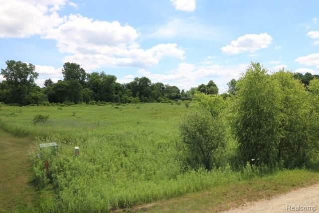 PAR 9 Simmons Trail, North Branch Twp, MI 48461 (MLS #2200050439) :: The Toth Team