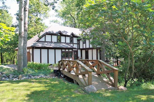 4130 Thatcher Road, Williamstown Twp, MI 48895 (#630000247447) :: The Mulvihill Group