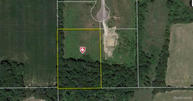 LOT 15 Adelines Way, Iosco Twp, MI 48836 (#2200052032) :: Novak & Associates