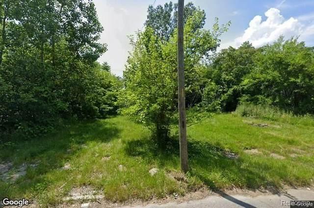 13539 Arlington, Detroit, MI 48212 (#2200052197) :: Novak & Associates