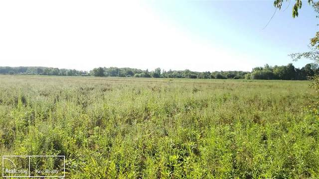 "0 Egling Road Parcel ""F"", Riley Twp, MI 48041 (#58050016747) :: The Merrie Johnson Team"
