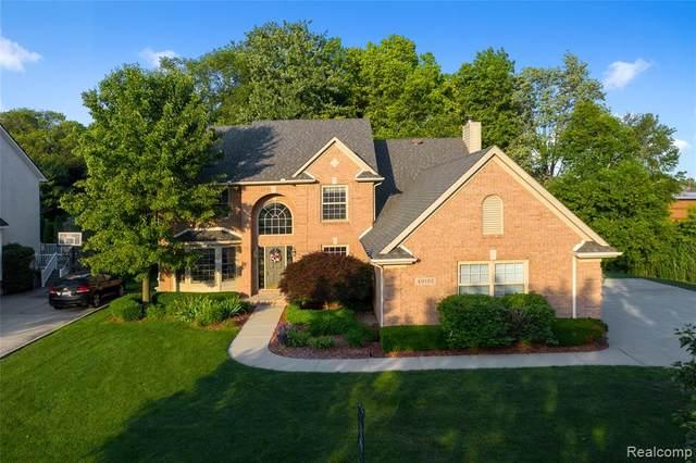 49192 Sandra Drive, Shelby Twp, MI 48315 (#2200053238) :: GK Real Estate Team