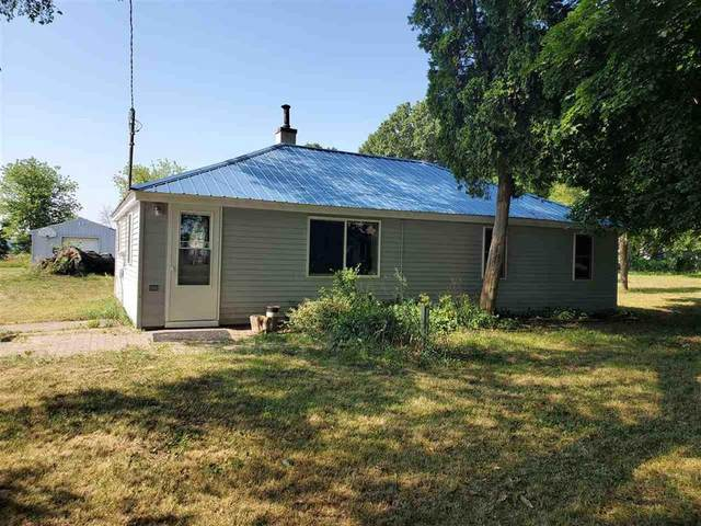 16781 Cement City Rd, Woodstock, MI 49233 (#55202001856) :: The Mulvihill Group