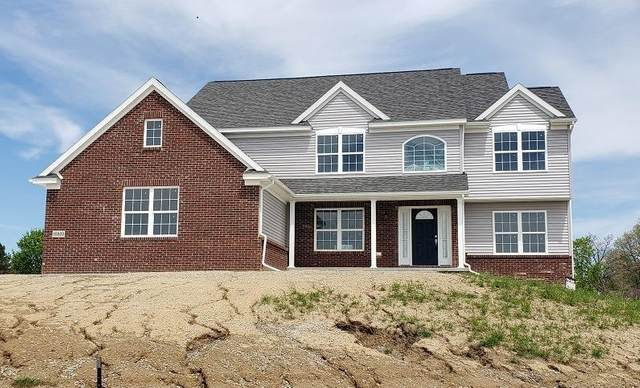 10223 Valley Farms Road, York, MI 48176 (#543274742) :: The Mulvihill Group
