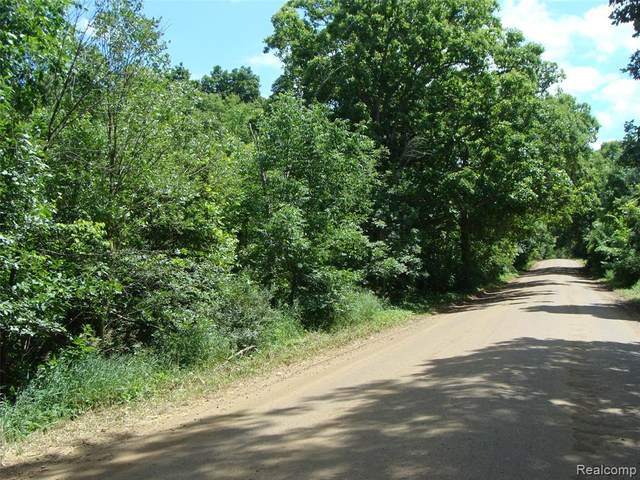 00 Rose Center Road, Rose Twp, MI 48442 (#2200054528) :: BestMichiganHouses.com