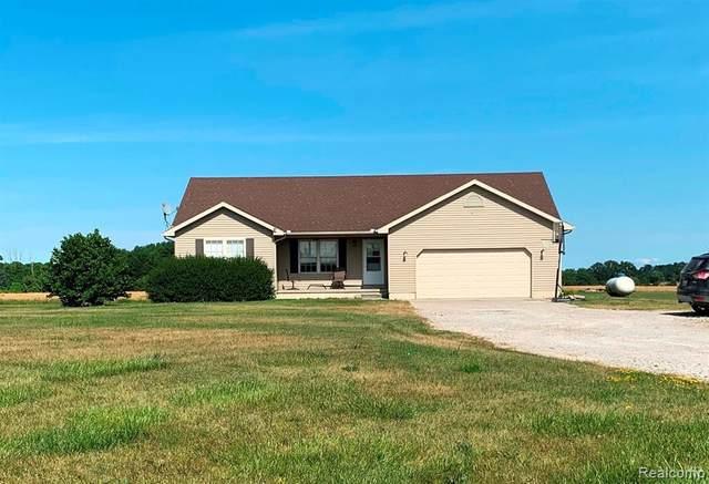 6916 Wildcat Road, Grant Twp, MI 48032 (#2200054942) :: Novak & Associates