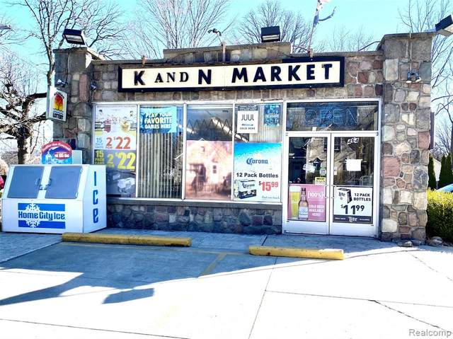 464 N Bailey Street, Romeo Vlg, MI 48065 (#2200056289) :: BestMichiganHouses.com