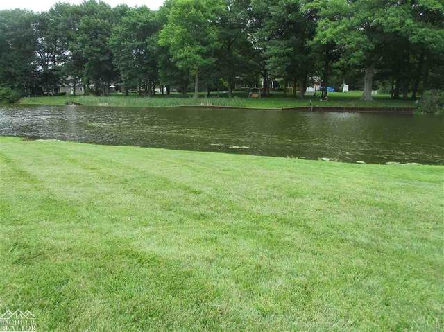 0 Belle River, East China Twp, MI 48054 (#58050018155) :: The Mulvihill Group