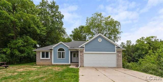5555 W Us 12, Franklin Twp, MI 49287 (#56050018377) :: RE/MAX Nexus