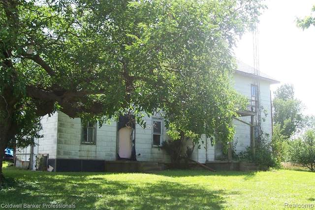 5774 Burnside Road, North Branch Twp, MI 48461 (MLS #2200060899) :: The Toth Team