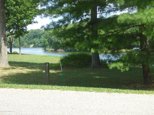 166 Lakeside Drive, Fulton Twp, MI 48871 (MLS #630000248337) :: The John Wentworth Group