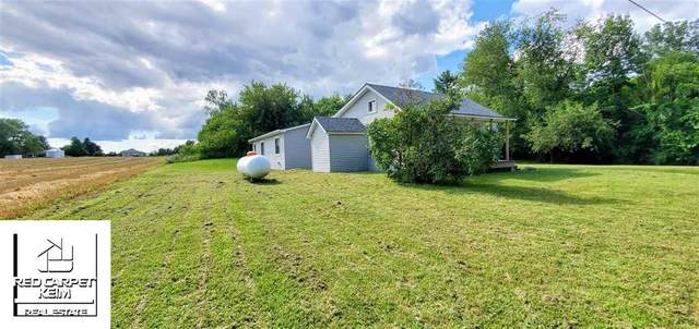 9321 Henderson, Forest Twp, MI 48463 (MLS #5050019287) :: The Toth Team