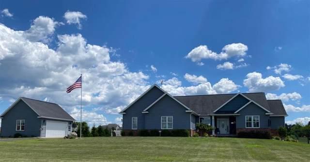 12201 Old Farm Lane, Grass Lake Twp, MI 49240 (#543275328) :: Novak & Associates