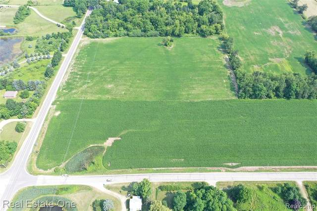 001 Rochester Road Cor Gen Square, Dryden Twp, MI 48428 (#2200062027) :: The Alex Nugent Team | Real Estate One