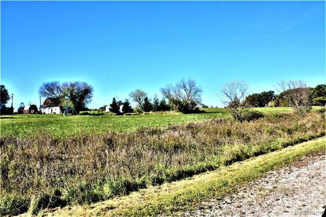 Parcel 2 Imlay City Road, Mussey Twp, MI 48014 (MLS #2200062451) :: The John Wentworth Group