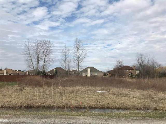 52385 Sass, Chesterfield Twp, MI 48047 (MLS #58050019740) :: The John Wentworth Group