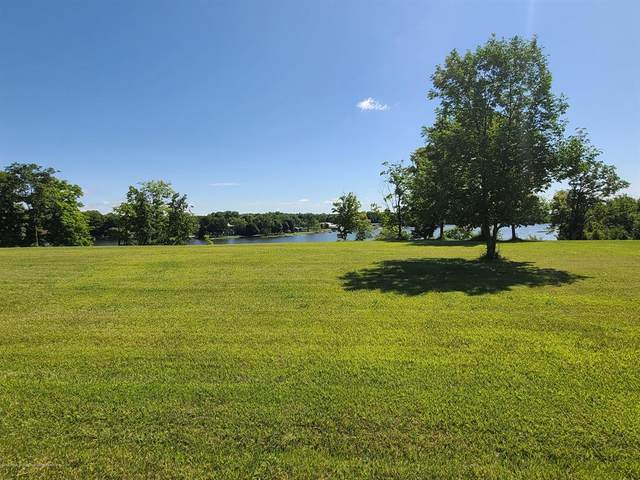 Lot 448 Lakeside Drive, Fulton Twp, MI 48871 (#630000248504) :: The BK Agency
