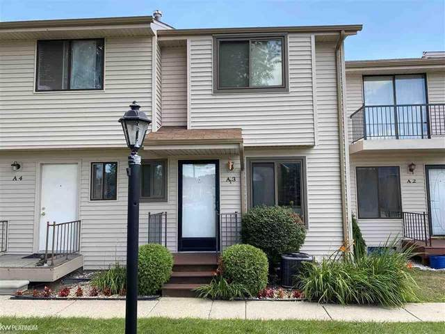 50636 Jefferson Ave Unit A3, New Baltimore, MI 48047 (#58050019817) :: The Mulvihill Group