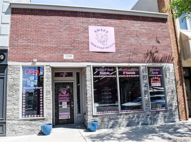 3209 Biddle Avenue, Wyandotte, MI 48192 (#2200063923) :: Novak & Associates