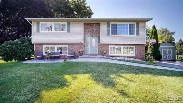 740 Meadowbrook Drive, Hudson, MI 49247 (#56050020058) :: The Alex Nugent Team   Real Estate One