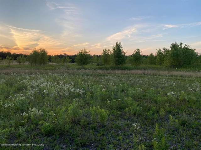 00 S St. Clair Road, Victor Twp, MI 48848 (#630000248582) :: The Alex Nugent Team | Real Estate One