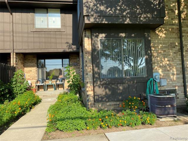 37403 Clubhouse Drive #113, Sterling Heights, MI 48312 (#2200064255) :: Alan Brown Group