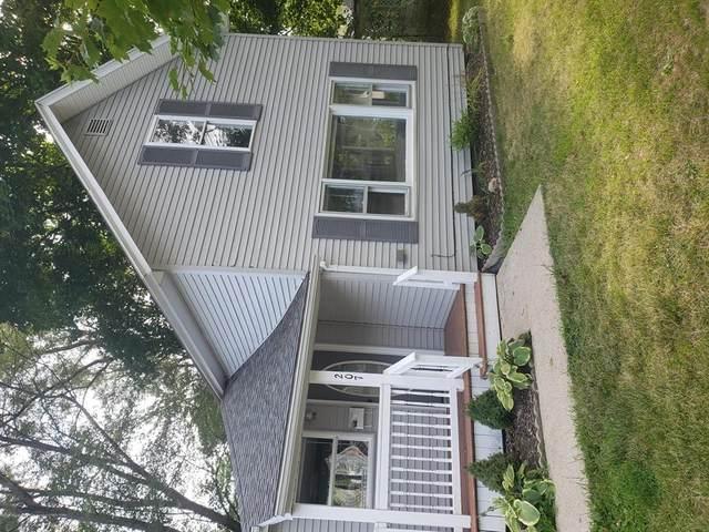 207 W Buchanan Street, St Johns, MI 48879 (#630000248618) :: The Alex Nugent Team | Real Estate One