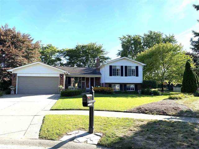 14146 Lakeshore Ct, Sterling Heights, MI 48313 (#58050020277) :: The Alex Nugent Team   Real Estate One