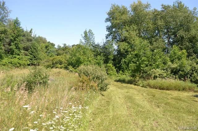 VL Hummer Lake Road, Brandon Twp, MI 48462 (#2200065535) :: The Mulvihill Group