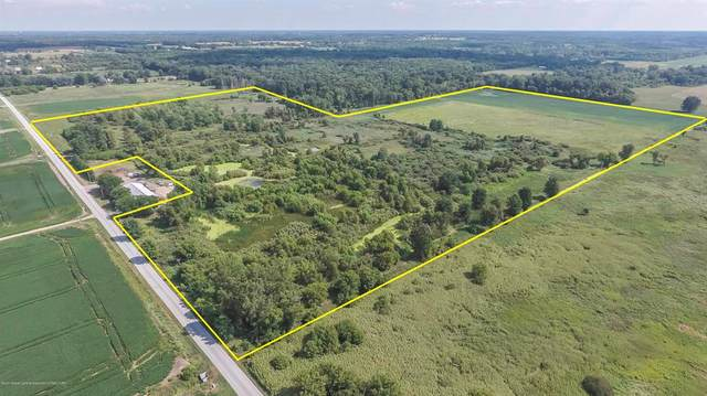 00 Lamb Road, Alaiedon Twp, MI 48854 (MLS #630000249231) :: The John Wentworth Group