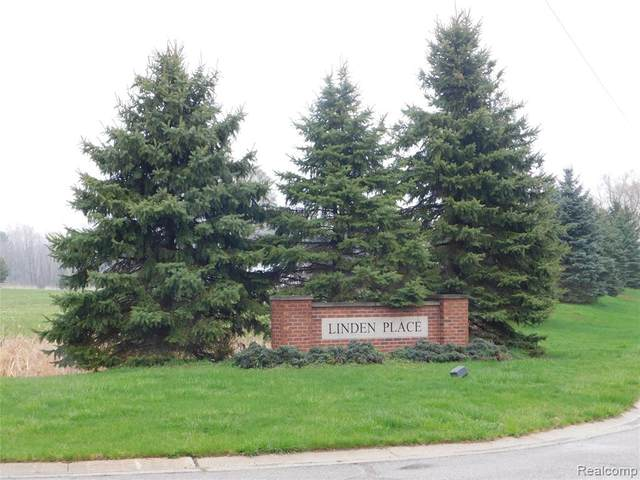 B-4 Lindemere Drive, Handy Twp, MI 48836 (#2200071125) :: Robert E Smith Realty