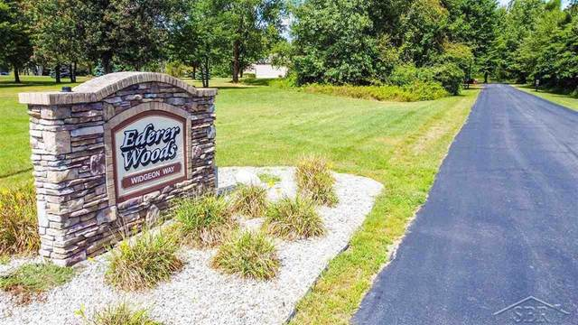 lot 23 Northern Pintail Drive, Saginaw Twp, MI 48626 (#61050022213) :: Keller Williams West Bloomfield