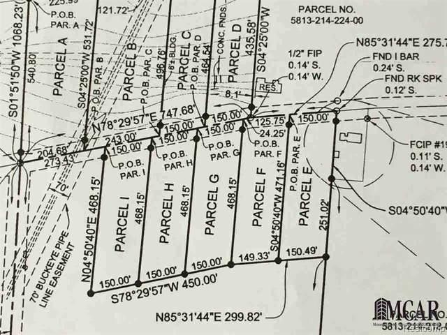 V Dixon Road, Raisinville Twp, MI 48161 (#2200072212) :: RE/MAX Nexus