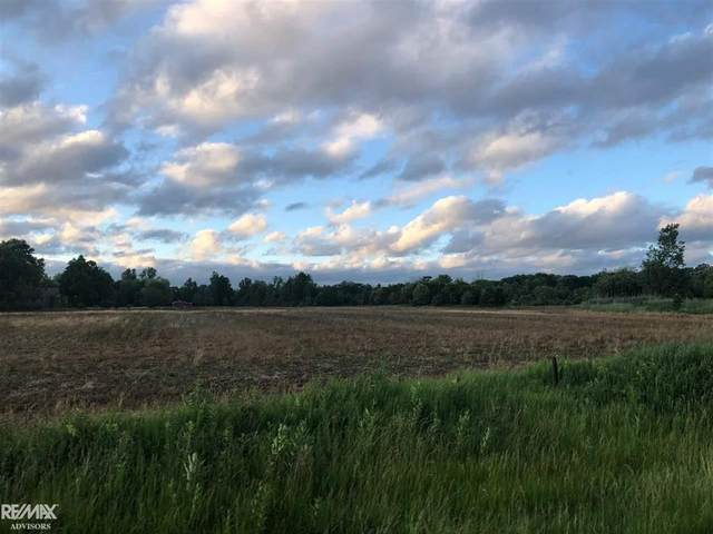 0 Shea - Lot #1, Cottrellville Twp, MI 48039 (#58050022679) :: The Alex Nugent Team | Real Estate One