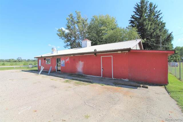 2734 S Sandusky Road, Watertown Twp, MI 48471 (#2200073128) :: Real Estate For A CAUSE