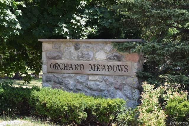 35721 Orchard Lane, Richmond, MI 48062 (#2200073983) :: The Mulvihill Group