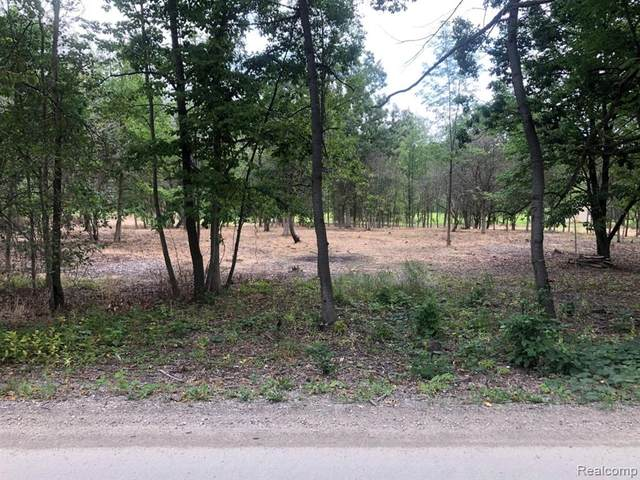 Parcel C Campground, Washington Twp, MI 48095 (#2200075493) :: The BK Agency