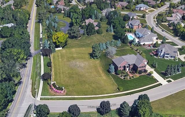 6161 Whitehills Lake Drive, Meridian Charter Twp, MI 48823 (#630000249659) :: Duneske Real Estate Advisors