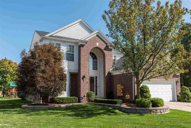49968 Crusader Dr, Macomb Twp, MI 48044 (#58050024036) :: The BK Agency