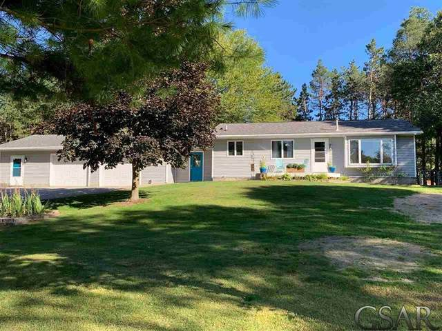 12420 NE 16 MILE RD, Oakfield Twp, MI 49319 (#60050024138) :: GK Real Estate Team