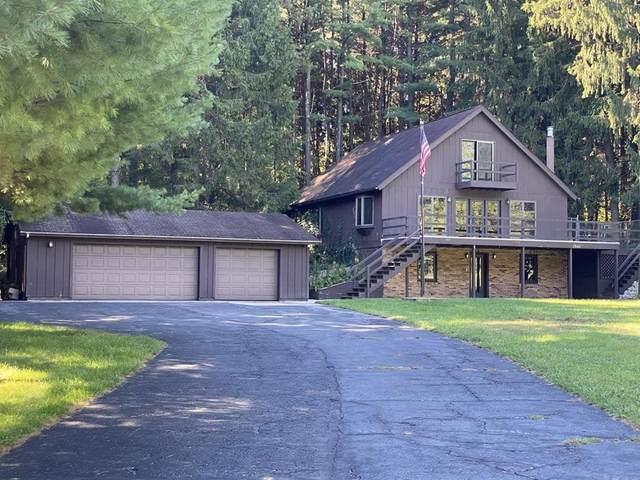 1330 S Bunn Rd, Hillsdale Twp, MI 49242 (#53020039358) :: Duneske Real Estate Advisors