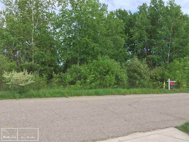 00 Old Farm Trail, Almont Twp, MI 48003 (#58050024400) :: The Mulvihill Group