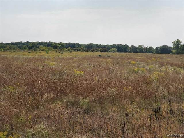 0 Lahring Road, Argentine Twp, MI 48436 (MLS #2200078446) :: The Toth Team