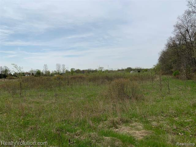 2.5 acres Bristol & Rider, Imlay Twp, MI 48444 (MLS #2200078730) :: The John Wentworth Group
