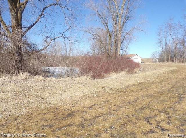 Parcel D Lyons Road, Goodland Twp, MI 48444 (MLS #2200079164) :: The Toth Team